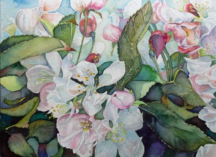 Apfelblüten - immer wieder ein interessantes Farbspiel (c) Aquarell von Frank Koebsch
