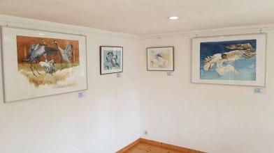 Einblick in unsere Ausstellung Faszination Mönchgut im Bredehhaus Middelhagen (c) Frank Koebsch (8)