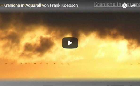 Kraniche in Aquarell - Video