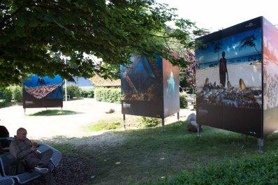 Die Ausstellung von York Hovest – Helden der Meere - im Rahmen des Umweltfotofestival - horizonte zingst am Max Hüntenhaus (c) FRank Koebsch (2)