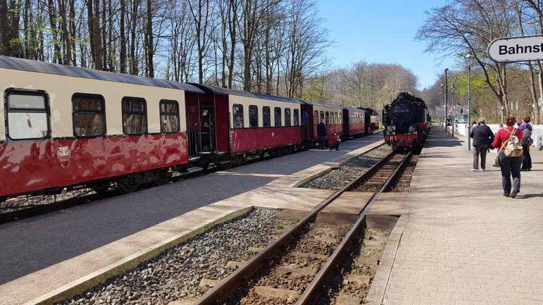 Molli in Heiligendamm (c) FRank Koebsch (1)
