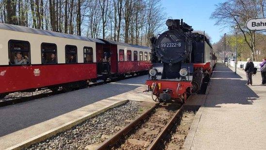 Molli in Heiligendamm (c) FRank Koebsch (4)