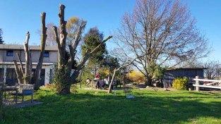 Schnappschüsse ais dem Garten der Alten Büdnerei (c) FRank Koebsch (3)