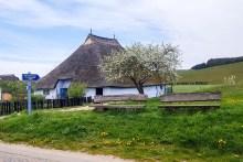Pfarrwitwenhaus von Groß Zicker im Frühling (c) Frank Koebsch (2)