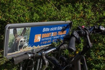 PLein Air Festival 2018 - Unterstützung durch den Fahrradverleih Drahtesel (c) Frank Koebsch