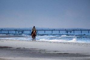 Reiter am Ostseestrand von Graal Müritz (c) Frank Koebsch (2)