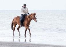 Reiter am Ostseestrand von Graal Müritz (c) Frank Koebsch (25)