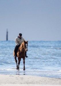 Reiter am Ostseestrand von Graal Müritz (c) Frank Koebsch (5)