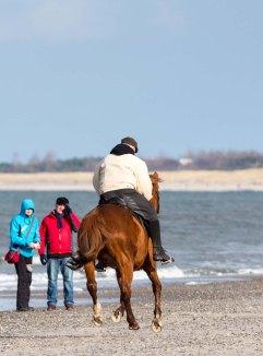 Reiter am Ostseestrand von Graal Müritz (c) Frank Koebsch (50)