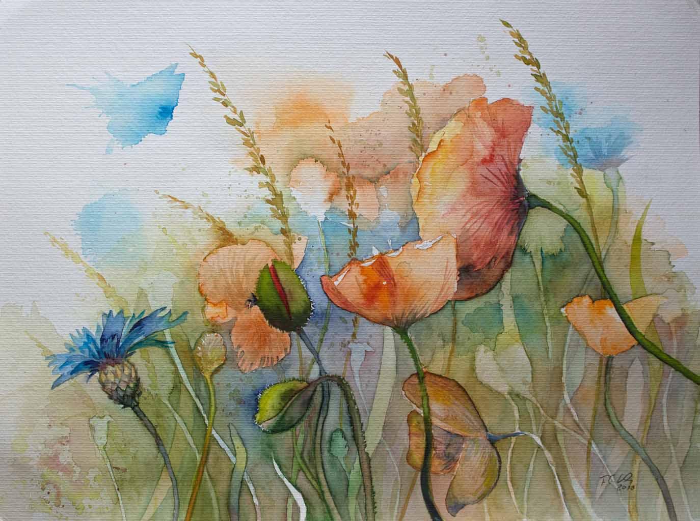 Mohnblüten am Feldrand (c) Aquarell von Frank Koebsch