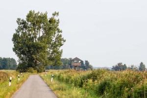Beobachtungsturm im Anklamer Stadtbruch (c) FRank Koebsch