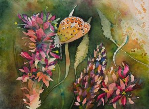 Farbspiele im Spätsommer (c) ein Schmetterlingsaquarell von Frank Koebsch