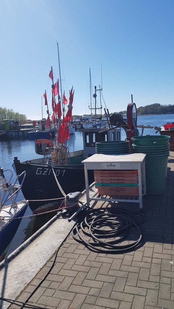 Fischkutter im Hafen von Thiessow (c) Frankk Koebsch (1)