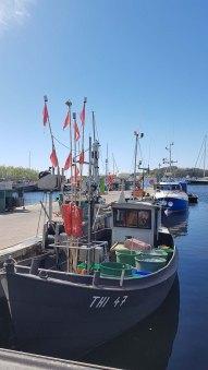 Fischkutter im Hafen von Thiessow (c) Frankk Koebsch (2)