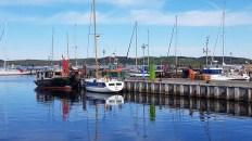 Idylle im Hafen von Thiessow (c) Frank Koebsch (2)