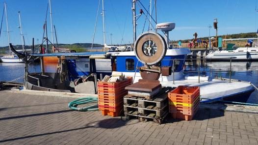 Kutter und Fichwaage im Hafen von Thiessow (c) FRank Koebsch