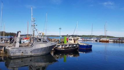 Kutter und Fischerboote im Hafen von Thiessow (c) Frank Koebsch (1)