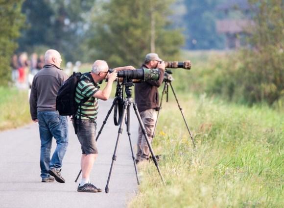 Naturfotografen im Anklamer Stadtbruch (c) FRank Koebsch