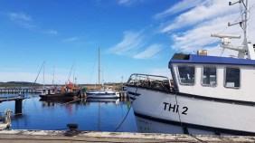Unser Motiv - ein Kutter im Hafen von Thiessow (c) FRank Koebsch (2)