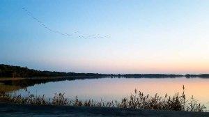Anflug der Kraniche auf den Rederand See bei Sonnenunergang (c) FRank Koebsch (3)