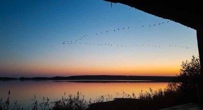 Anflug der Kraniche auf den Rederand See bei Sonnenunergang (c) FRank Koebsch (5)