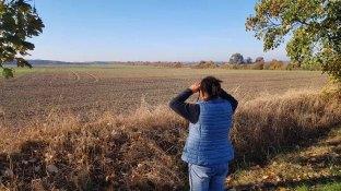 Auf der Suche nach den Kranichen rund um die Müritz (c) FRank Koebsch (3)