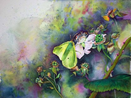 Brombeerblüten locken die Schmetterlinge © Aquarell von Frank Koebsch