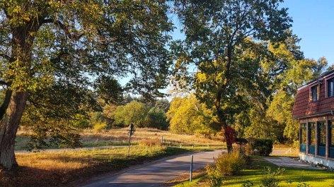 Herbst am Nationalparkhotel Kranichrast (c) FRank Koebsch