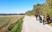 Kranichbeobachtungen auf den Feldern an der Müritz (c) FRank Koebsch (6)