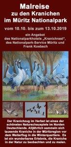 Malreise zu den Kranichen im Müritz Nationalpark 2019
