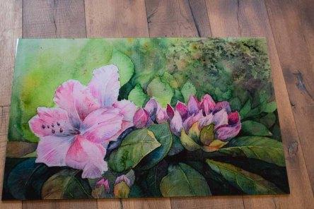 Galerie Druck auf Alu Dibond vom Aquarell - Rhododendronblüten (c) FRank Koebsch (2)