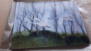 Galerie Druck auf Alu Dibond vom Aquarell - Schwäne im Flug (c) Frank Koebsch