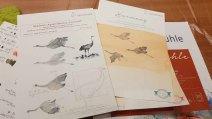 Welchen Unterschied macht das Aquarellpapier (c) FRank Koebsch (2)