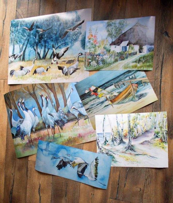 Posterdrucke von einiger unserer Rügen Aquarelle (c) FRank Koebsch
