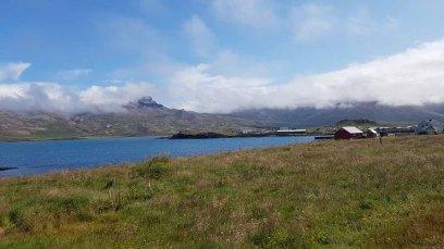 Isländische Natur in Bakkagerði (c) Frank Koebsch (3)