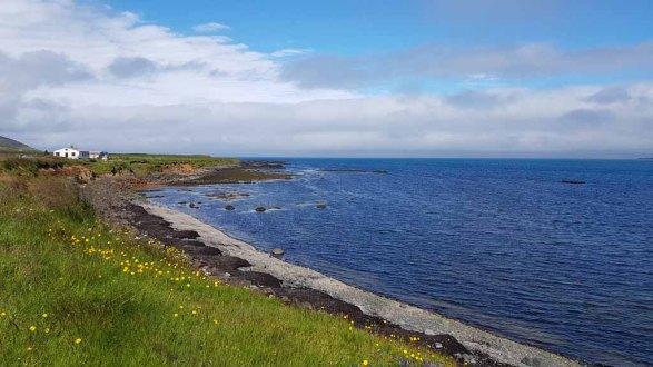 Isländische Natur in Bakkagerði (c) Frank Koebsch (4)