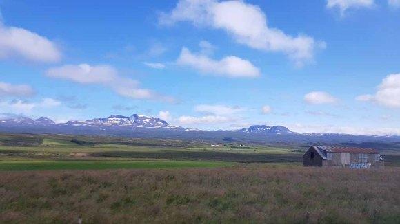 Isländische Natur zwischen Seydisfjördur u Bakkagerði (c) FRank Koebsch (4)