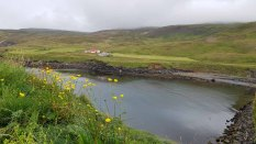 Blick vom Borgarfjarðarhöfn - Island (c) Frank Koebsch (1)