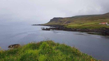 Blick vom Borgarfjarðarhöfn - Island (c) Frank Koebsch (3)