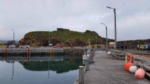 Hafen von Bakkagerði - Island (c) Frank Koebsch (2)