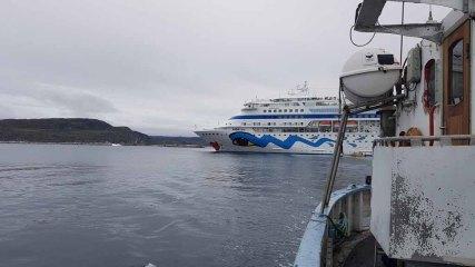 Die AIDA Cara vor Ilimanaq die Disko Bucht (1) FRank Koebsch
