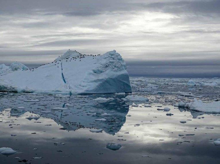 Eisberge vor Ilimanaq in der Disko Bucht (2) Hanka Koebsch