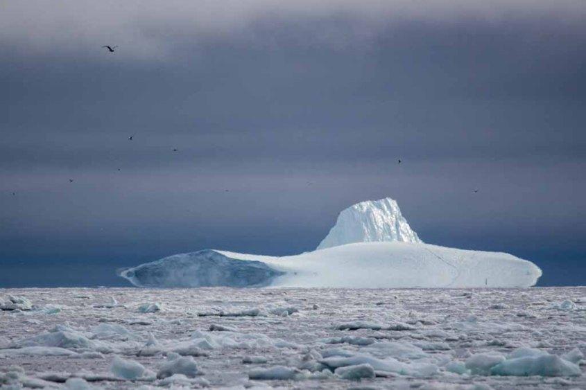Eisberge vor Ilimanaq in der Disko Bucht (3) Frank Koebsch