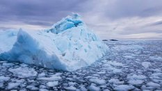 Eisberge vor Ilimanaq in der Disko Bucht (8) Frank Koebsch
