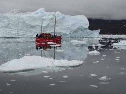 Wir erkunden mit einem Kutter von Ilimanaq die Disko Bucht (1) Hanka Koebsch
