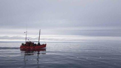 Wir erkunden mit einem Kutter vor Ilimanaq die Disko Bucht (2) Frank Koebsch