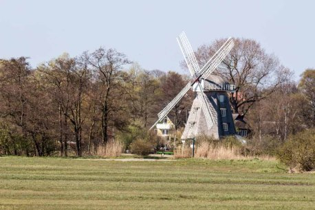 Ahrenshooper Mühle (c) FRank Koebsch (1)