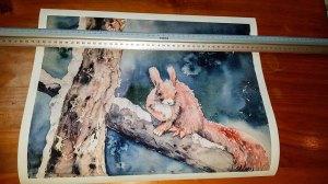 Druck auf Hahnemühlepapier - Albrecht Dürer von dem Eichhörnchen Aquarell – Besetzt © Hanka Koebsch