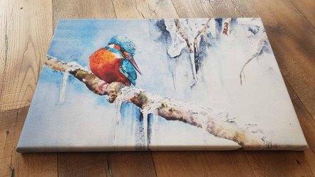 Druck auf Keilrahmen von dem Aquarell – Kleiner Eisvogel © Hanka Koebsch