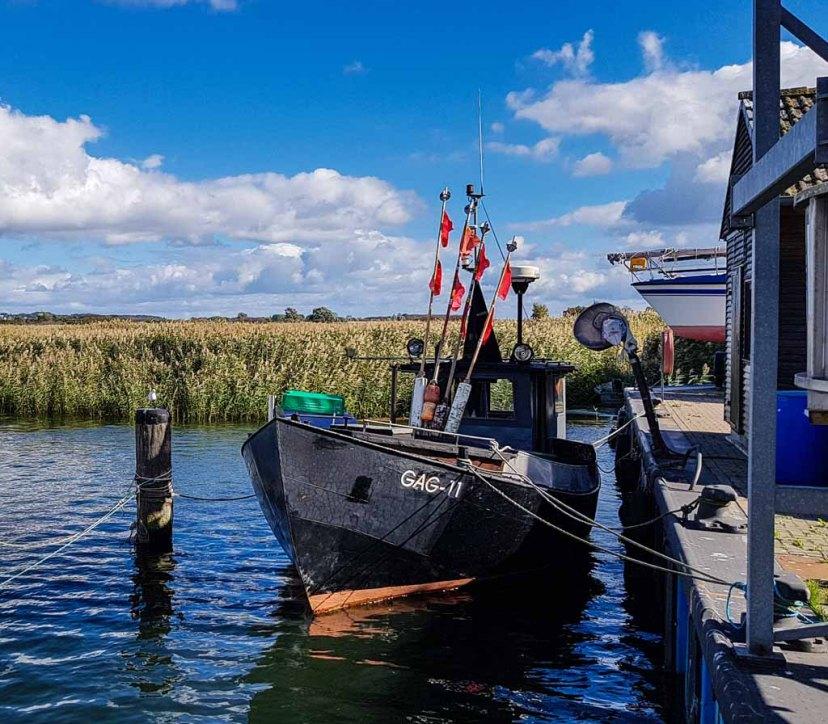 Fischkutter GAG 11 im Hafen von Gager © Frank Koebsch (1)